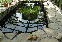 Garden Pond goodness