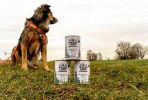 Hundeernährung/ Hundefutter / Dog Food / Alles rund um das Thema Hundeernährung