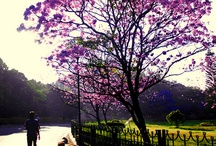 Namma Bengaluru