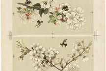 Art ~ Flowers
