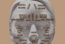 Réfléxologie
