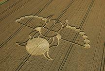 England - crop circles