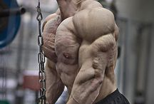 Bodybuilding India / We are bodybuilding supplement store in india.