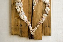 seashells / what can be made from shells