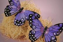 Motýli / Krása motýlů