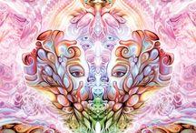 The Mind / by Shari Furtak
