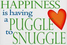 Puggles n things / by Kristen Weber