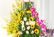 Flowers delivery in Hanoi / Send flowers, buy flowers in Hanoi Flower Shop, Flowers delivery free shipping in Hanoi