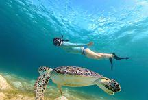 Snorkeling - Top 10 Travel Lists