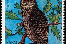 znaczki sowy