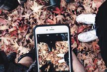 * ISM. Autumn.
