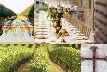 Winery + Vineyard Weddings