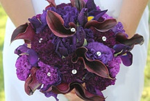 Perfect Purples / by Lizzy's Bloomin' Flowers