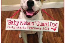 Bitty Baby Bailey / Cute nursery/baby ideas