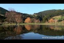 Videos / Azores