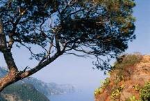 vakantie 2016 Frankrijk - Mallorca