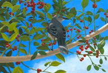 Birds of Florida / A collection of 12 bird paintings I am doing