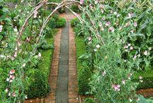 Vegetable gardens - integrated