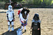 Mini Horse Costume Ideas