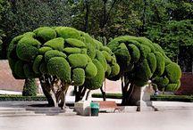Parque del Buen Retiro / Pins about the biggest park in Madrid.