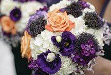 Lime, Purple, Orange Wedding / lime, purple, and orange wedding theme / by Sharon Rose Berger