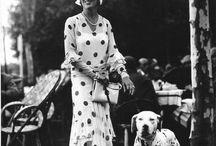 Vintage Photos - DogFoodDirect.com