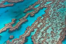 Great Barrier reef my next goal