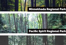 Where To Go Forest Bathing In British Columbia / Forest bathing is the Japanese practice of taking a brief, leisurely walk through the woods.  The relaxing walk helps reduce stress and anxiety. Here is where you can do it right here in British Columbia.