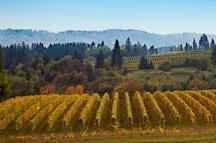 Oregon & Washington Wine events