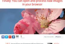 Helpful biz blog posts