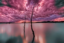 Nature's Beauty (& Fury)