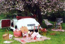 Picnic!... / Ideas...baskets / by Sandra Walling