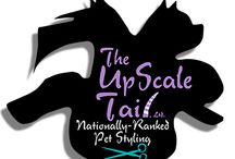 About us: The UpScale Tail, Pet Grooming Salon, Voted Best of Naperville, IL