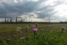 Auschwitz Birkenau / Photos from our Facebook group members of Auschwitz Birkenau