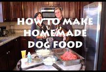 Homemade Dog Food Recipes / by Dinovite