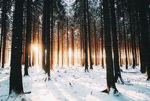 Photographie Winter