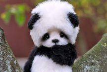 cuty!