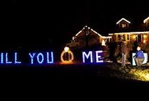Wedding Proposals / #proposal #engagement #engaged #marriage #proposals #wedding #getmarried