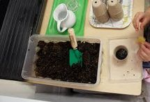 Outdoor Montessori / Montessori outside: gardening, planting, botany, zoology, practical life, care of the environment, composting, outdoor activities, materials, and learning.