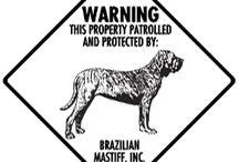 Brazillian Mastiff Signs and Pictures / Warning and Caution Brazillian Mastiff Signs. https://www.signswithanattitude.com/brazilian-mastiff-signs.html