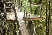 Bridges, viewing platforms