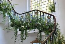 Staircase Flowers