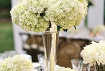Wedding Trends - 2014 / by UW Oshkosh Alumni Welcome & Conference Center