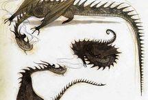 draco and himeras