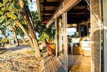 Tropic houses