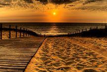 Beach surf love away