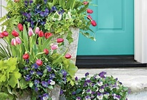Potted Up / Gardening in containers, even the largest gardens can use container plantings.. / by Sara Lingerman