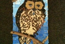 Al's Owls / Yes, I love owls - I think over the years it has become an obsession