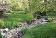 Ideas for dry river bed garden