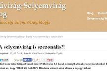Blogbejegyzés ajánló / Művirág-Selyemvirág Blog ( http://orchideaselyemvirag.hu/blog ) ajánlója